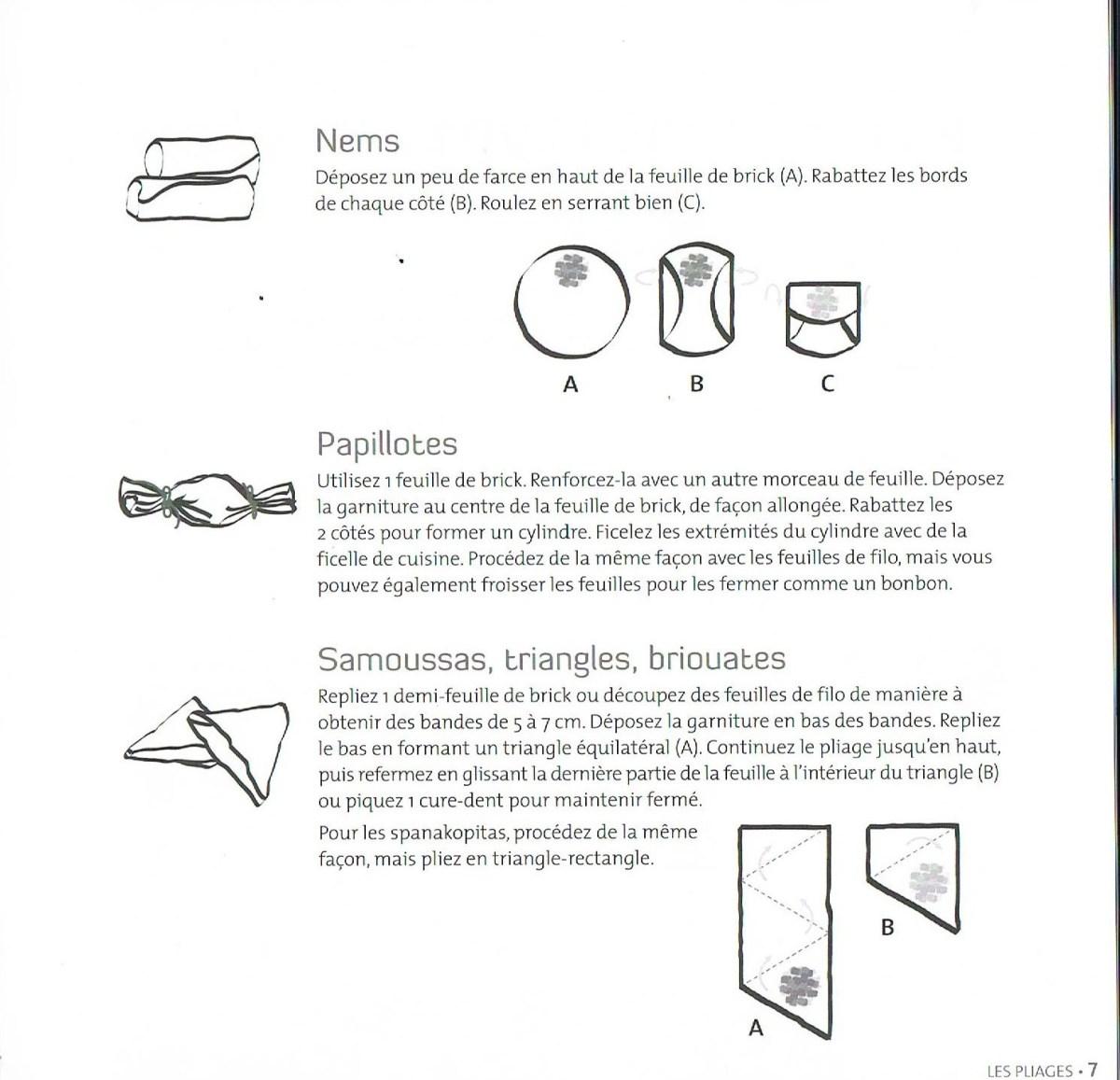 Assez Techniques de pliage (feuille de brick, galette de riz…) – Un  HM81